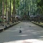 Berfoto Dengan Kera yang Jinak di Alas Kedaton Bali