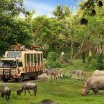Bali Safari and Marine Park – Wisata Hewan di Bali