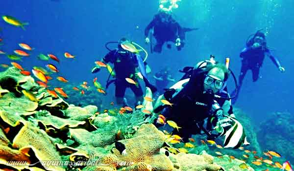 bali introductory scuba diving