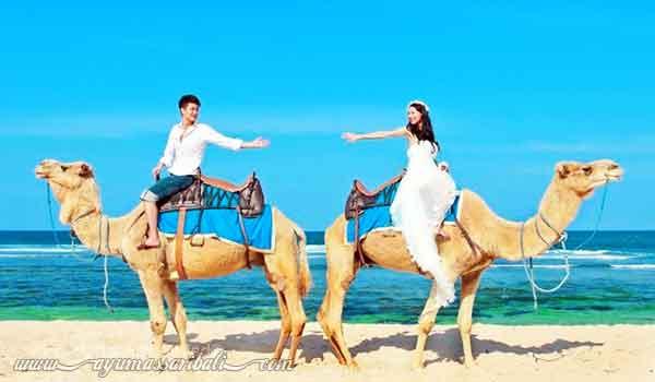 foto prewedding naik unta di nusa dua bali