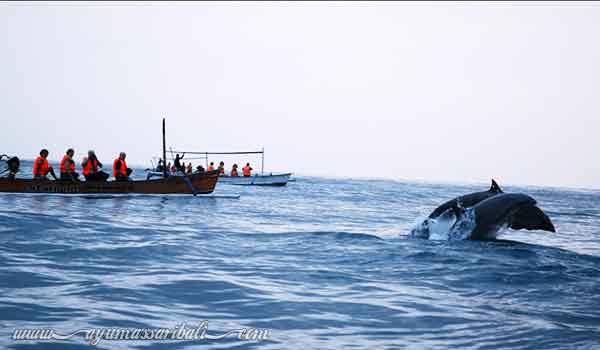 pariwisata di bali utara