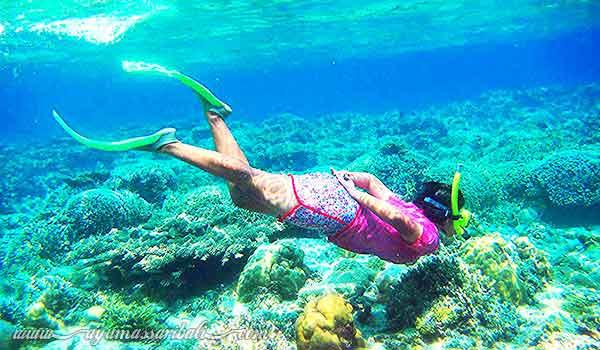 snorkeling pulau menjangan bali