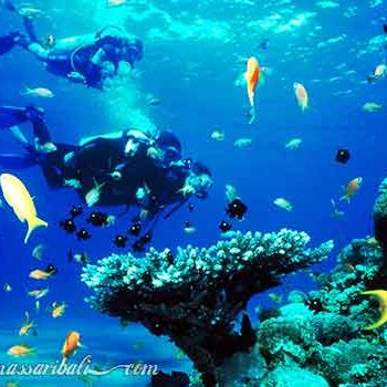 tempat diving di bali